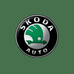 Значок-эмблема-автомобиля-Skoda